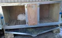 Каа сделать клетку для кроликов 2