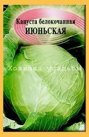 Лучшие сорта ранней белокочанной капусты, правильный выбор.