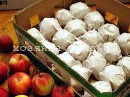 Советы, как сохранить яблоки на зиму долго.
