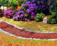 Что такое мульчирование почвы.