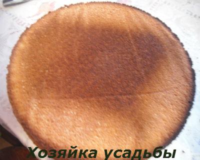 Бисквит рецепт классический17