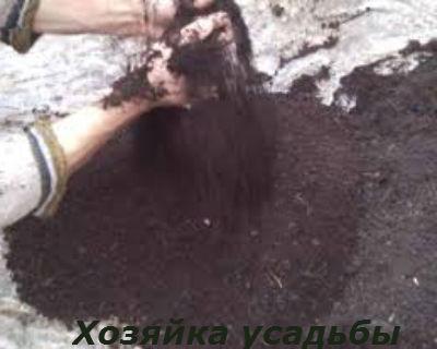 Почва для рассады томатов1