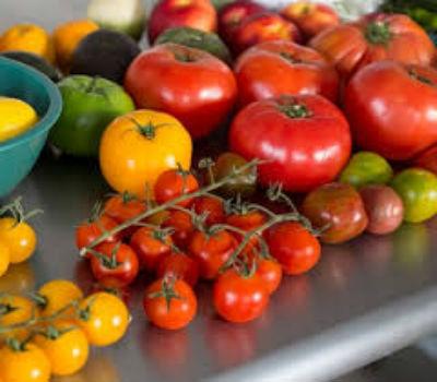 sorta-pomidorov-dlya-teplitsy-iz-polikarbonata5