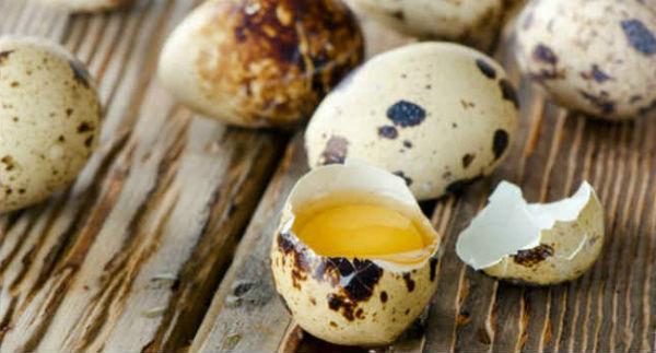 Перепелиные яйца, польза и вред для женщин, мужчин, детей